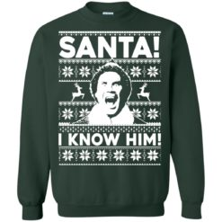 Elf Santa I Know Him Christmas Sweatshirt, long sleeve, t-shirt shirt - image 1870 247x247
