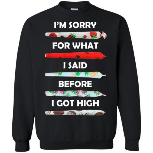 I'm sorry for what I said before I got high shirt - image 586 510x510